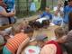 Galeria Piknik Rodzinny we Frączkowie