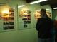 Galeria mikulovice